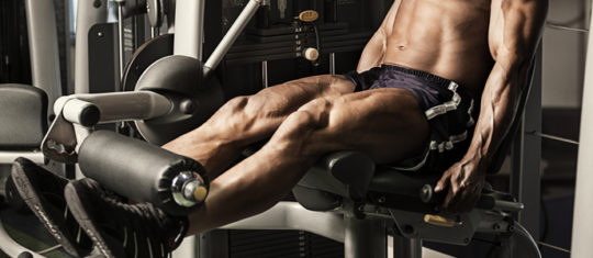 Musculation cuisses fines